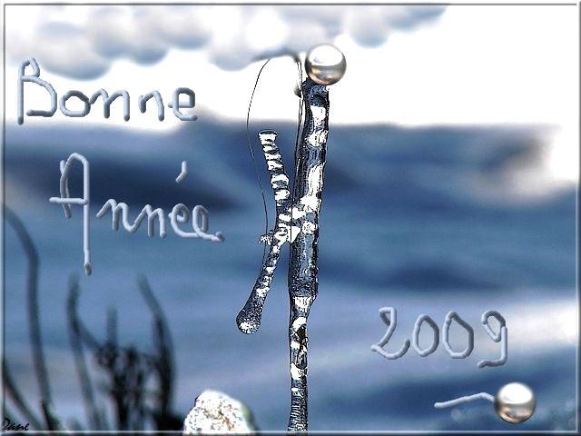 1AA_glace_BA