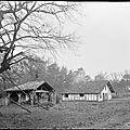 Maison Tchopis - Cornalis (Morcenx)