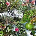 Compo Jardin Botanique