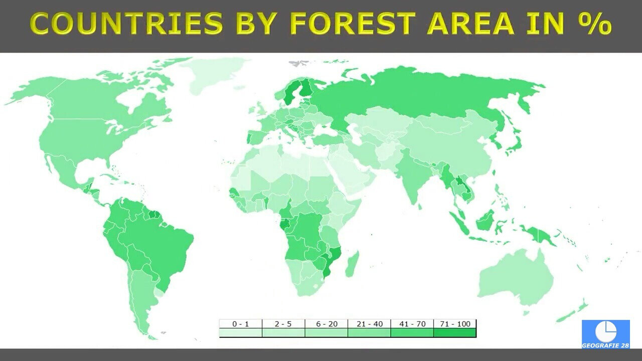 countries by forest aera in percentage