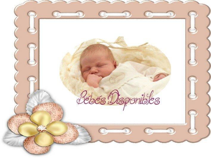 Bébés disponibles
