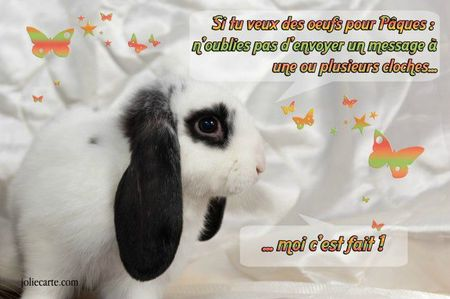 lapin-cloches