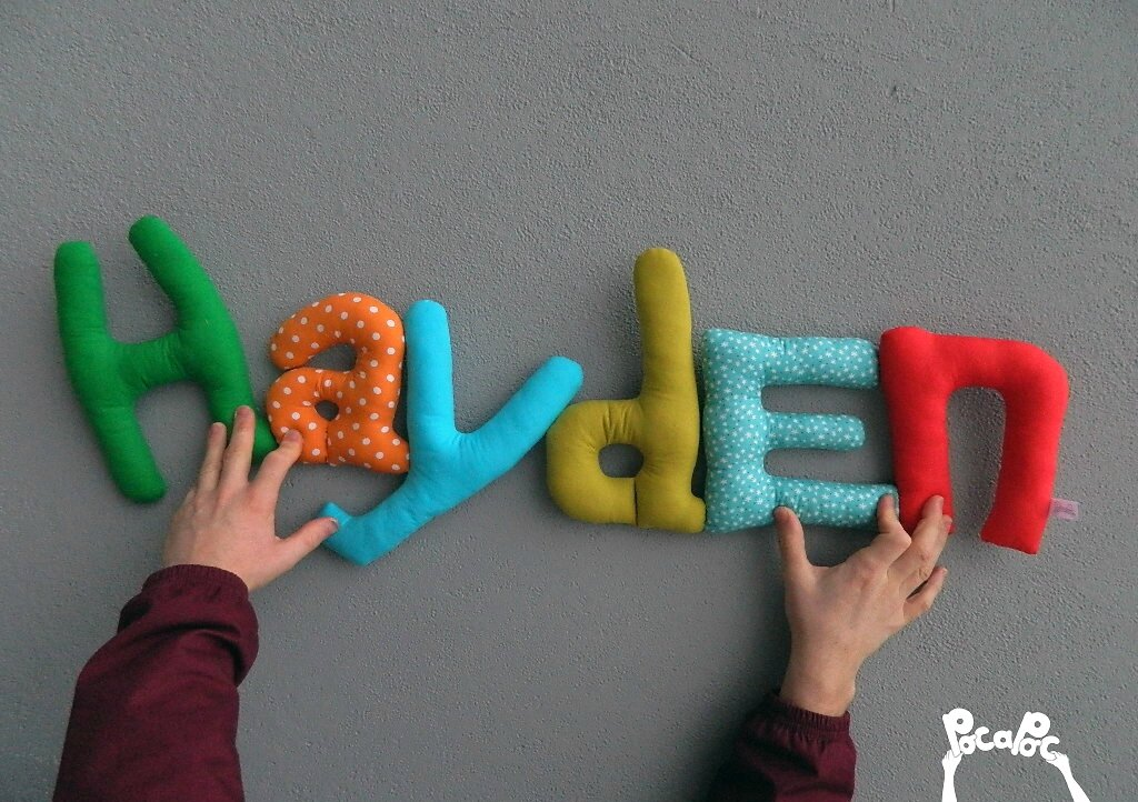 hayden logo blog