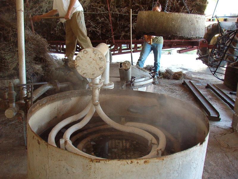 Distillerie-Vallon des lavandes