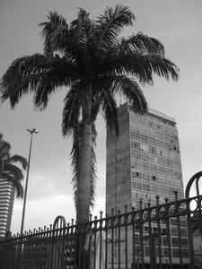 fotos_153