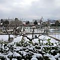 neige dans les jardins 4 février 2012