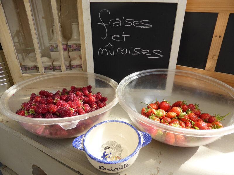 15-fraises, mûroises (2)
