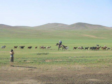 21_Mongolie___Direction_Khogno_Khan_020