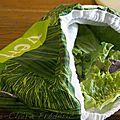 Je ne vous ai jamais parlé du sac à salade
