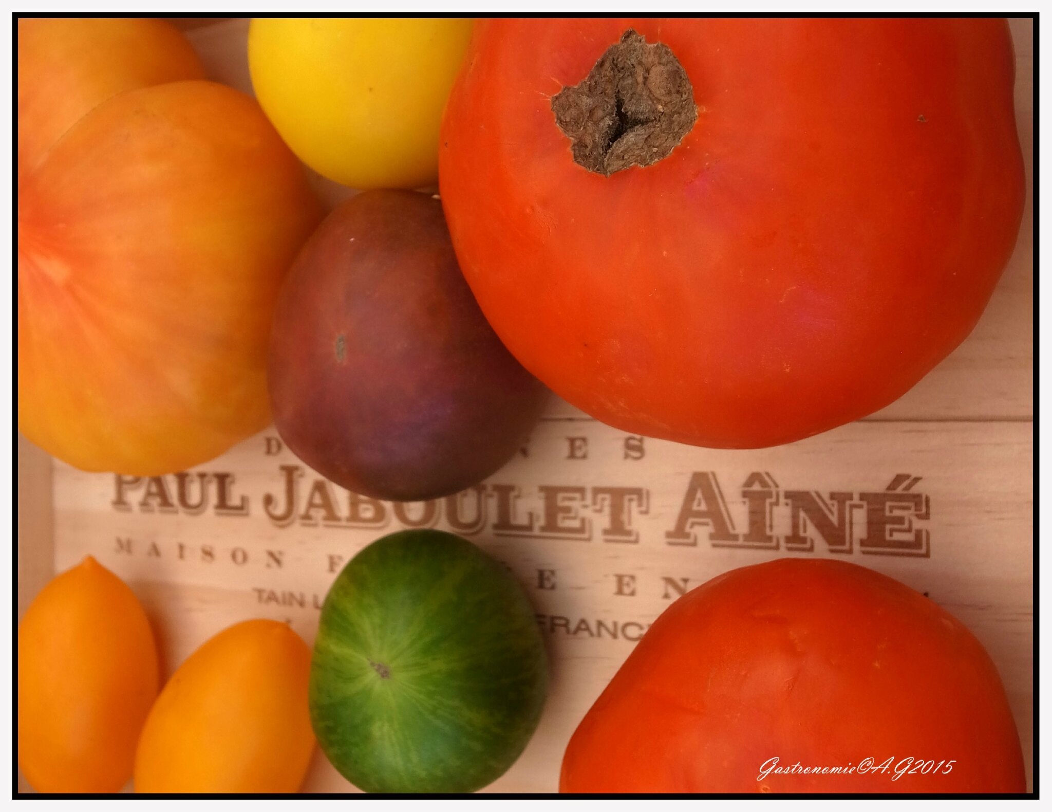 Les tomates du Vineum