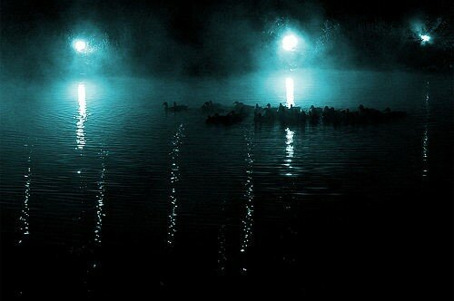 Tarostatics_nuit_canards