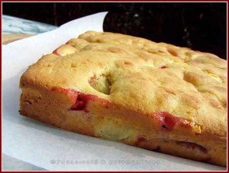 fraises_rhubarbe__43_