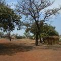 Mandiana