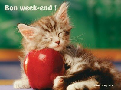 bon_week_end_chat
