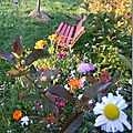 Windows-Live-Writer/Jardin_10232/DSCN0734_thumb
