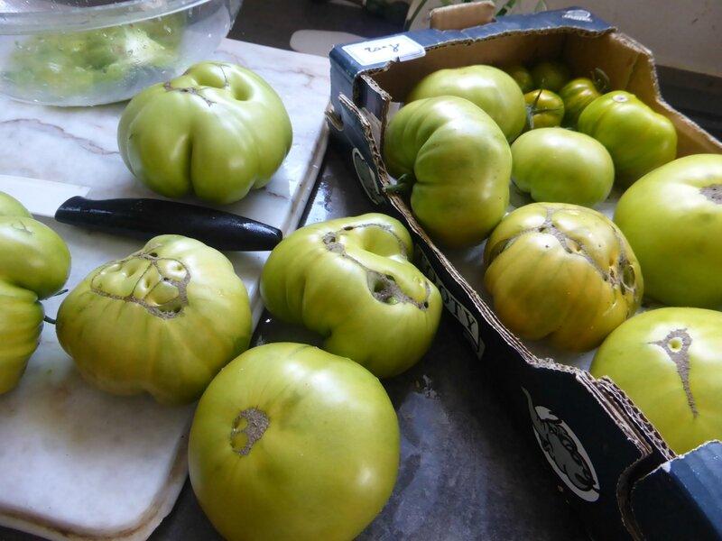 23-tomates sauce (3)