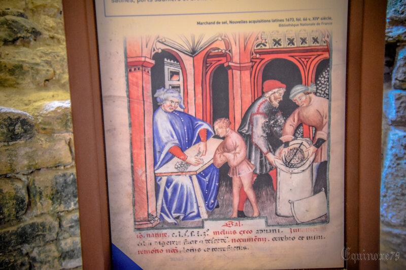 Cave à sel Abbaye de Maillezais A la table de Gargantua, on y mange aussi des légendes