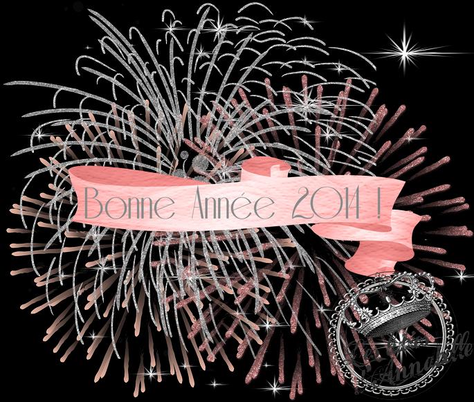 Bonne Année 2014 ! feu