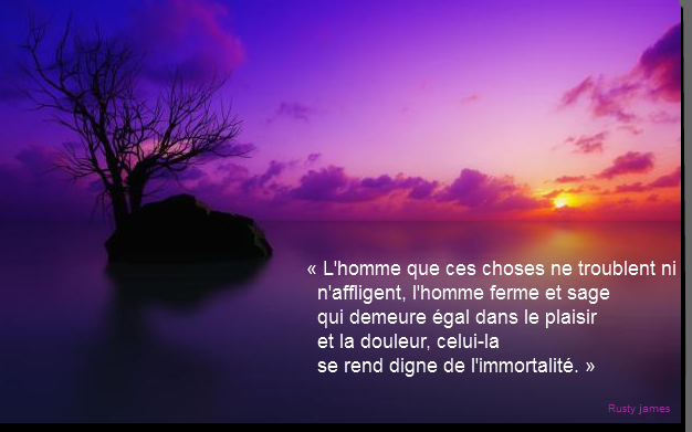 Firefox_Screenshot_2017-02-18T13-56-14