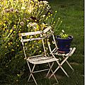 Windows-Live-Writer/jardin_D005/DSCF3850_thumb