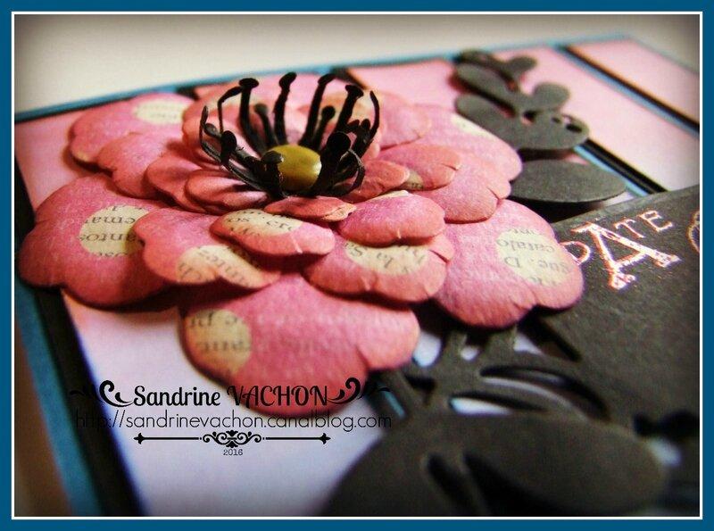 Sandrine VACHON pour PCC3 (2)