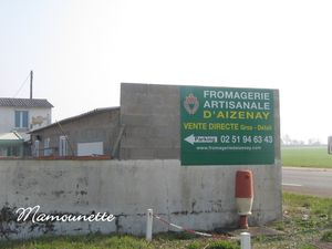 Fromagerie_de_ch_vres_Aizenay_003