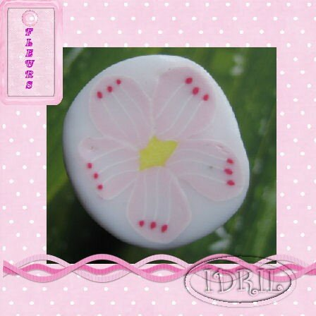 cane fleur rose IDRIL