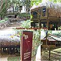 mosa_que_11_Habitat_Viet