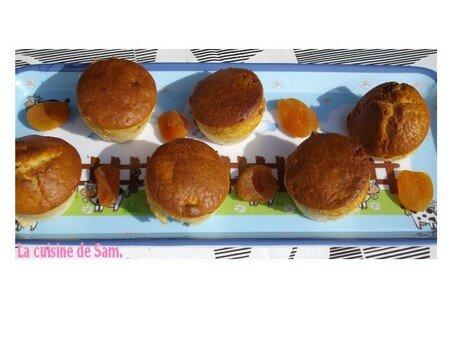 muffins_abricots4
