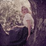 1953-09-02-LA-Laurel_Canyon-Tree_Sitting-031-1a