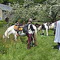 balade à cheval médiévale - Abbaye de Hambye (217)