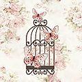 La cage aux papillons