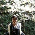 devant les sakura