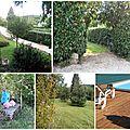 Une visite de mon jardin