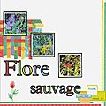 Flore sauvage-Swanton