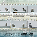 kokhine-concours 3a
