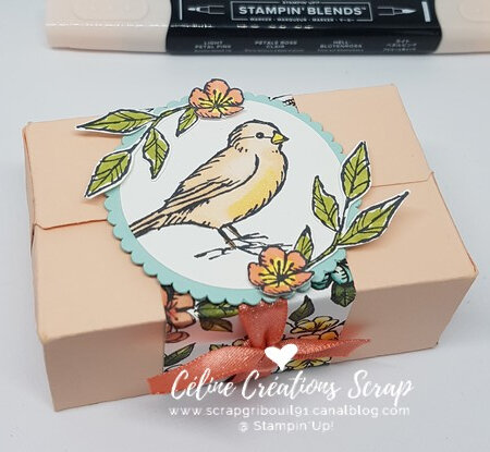 Paquets parfaits Libre comme un oiseau -7