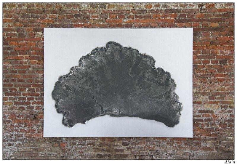 nuage d'aurore et nuage d'orage - Jacqueline Salmon
