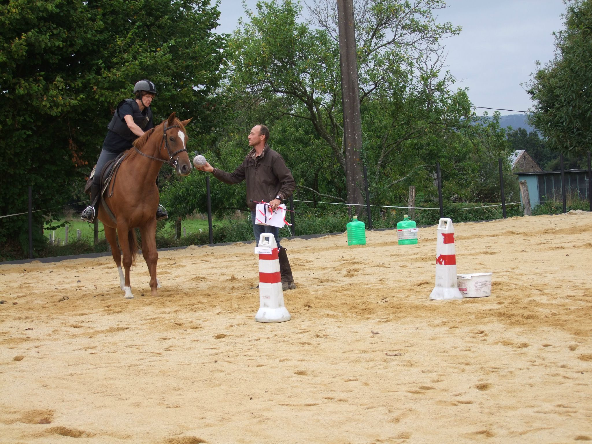 équitation d'extérieur - parcours en terrain varié (187)