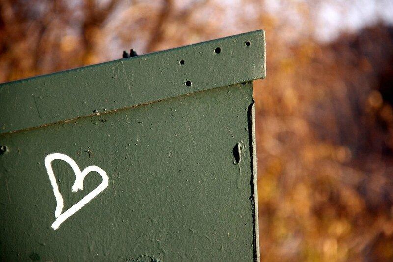 Coeur automne_9104