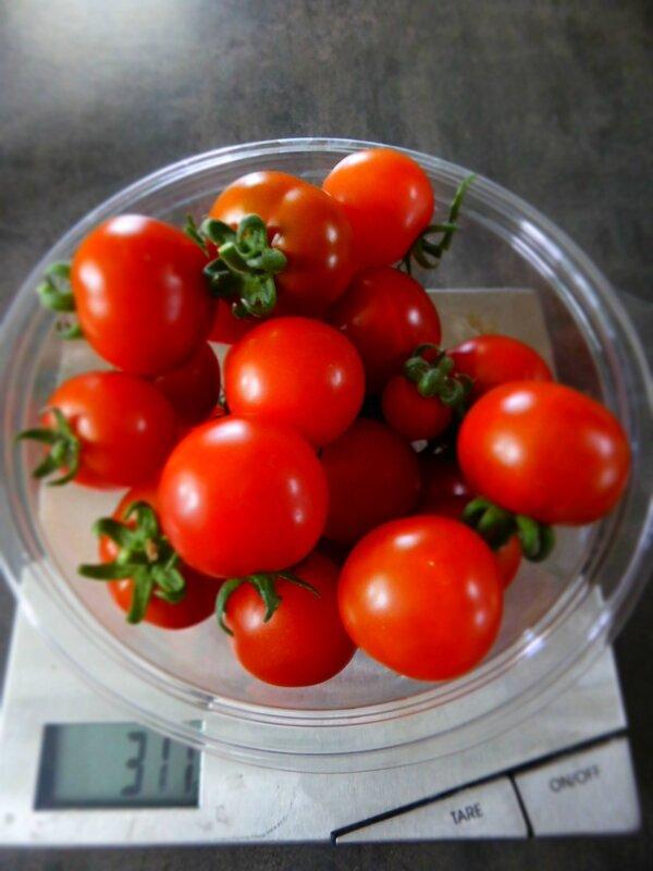 6-tomates naines