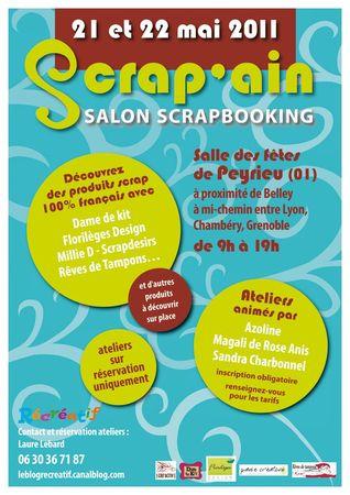 Scrapain2011