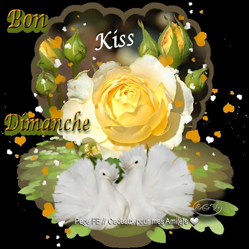 7 b d fleurs rose jaune BPat19