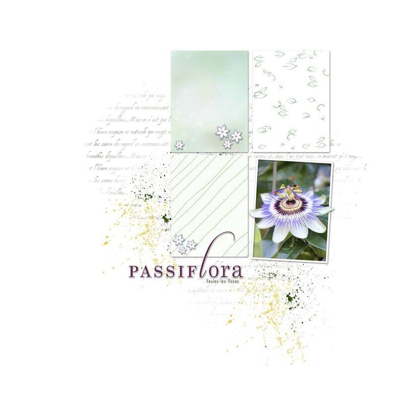 Veules-les-Roses_Passiflora