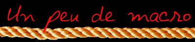 Un_peu_de_macro