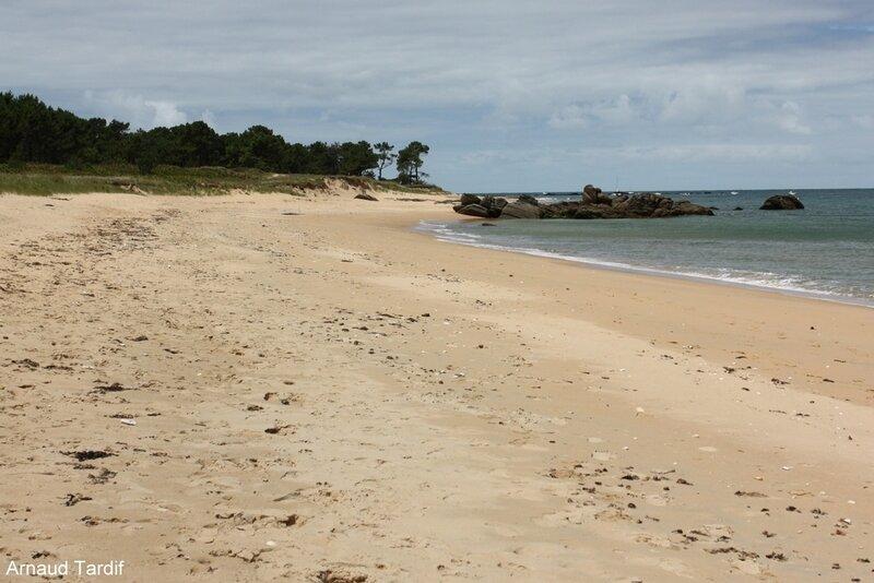 00616 Noirmoutier Juin 2020 - L'Ile d'Yeu de Port Joinville à la Plage des Vieilles - La Plage de la Grande Conche