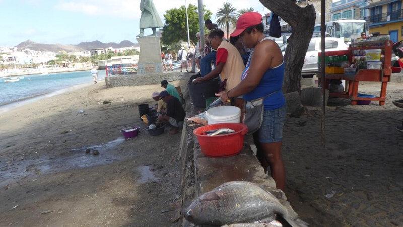 31 Vendeurs de poissons sur la plage