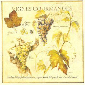 vignes_gourmandes__Pascal_cessou