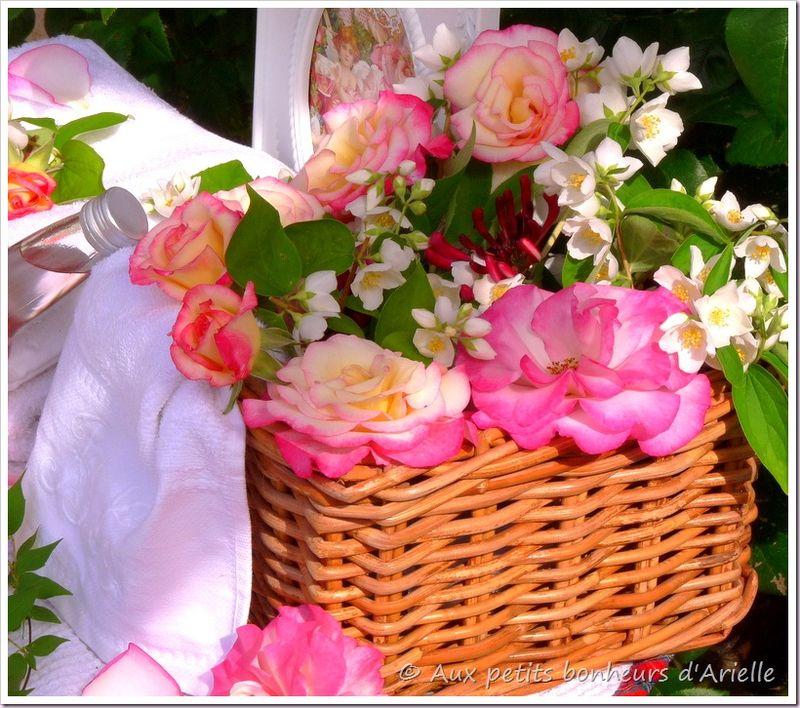 Eau de rose (4)