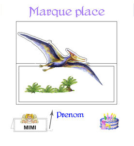 marque_place_2